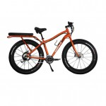 Surface604 - Fat Bike orange