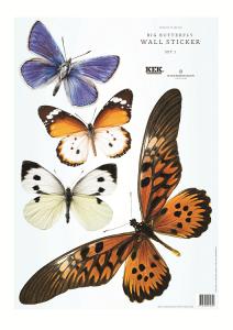 Interieurstickers Big Butterflies - complete set - KEK Amsterdam