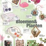 Shopping Special - Bloemen & Planten - Pers-Wereld.nl