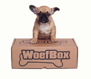 Verrassingsbox Woefbox.nl