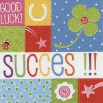Succes good luck kaart - Muller wenskaarten