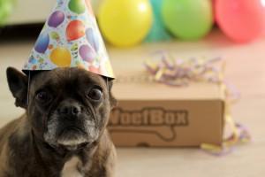 Verjaardagswoefbox - WoefBox