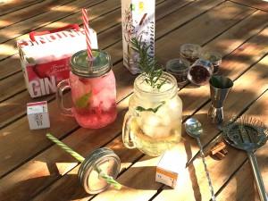 Spice up your life met de verrassende infusions van Té Tonic Nederland - te-tonic.eu