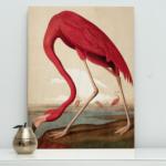 Print op Hout Flamingo - kek amsterdam