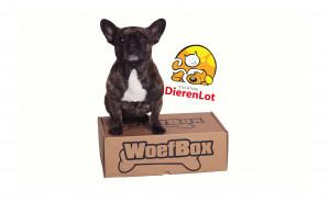 DierenLot Verrassings WoefBox