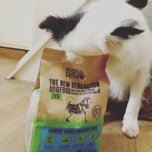 BugsforPets legt de focus op het verduurzamen van dierenvoeding