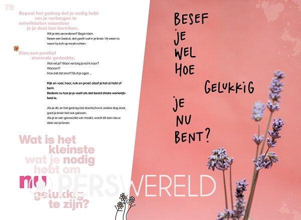 evelienvanderwerff-dit-boek-brengt-geluk-binnenwerk-4