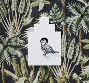 fineforest-vogelhuisje-pimpelmees-website