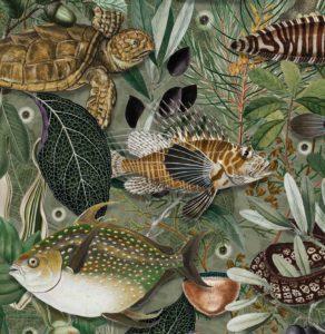 KEK Amsterdam lanceert fotobehang met exotische vissen in de hoofdrol