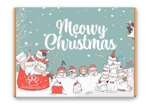 kattenveertjes-mystery-kerstpakket-website 2